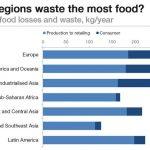 Despre risipa in sectorul alimentar